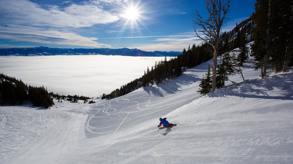 Last Minute Travel Deals To Jackson Hole