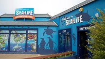 Sea Life Park - Weymouth