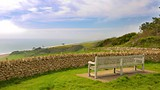 Abbotsbury Sub-Tropical Gardens - Weymouth - Tourism Media
