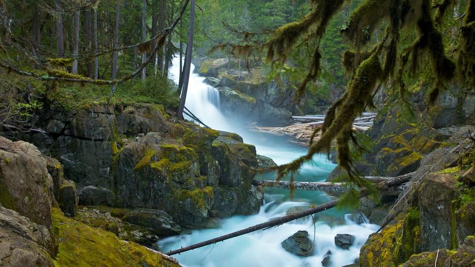 Mount Rainier National Park In Ashford Washington Expedia