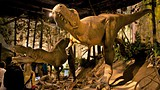 Royal Tyrrell Museum - Alberta - Tourism Media