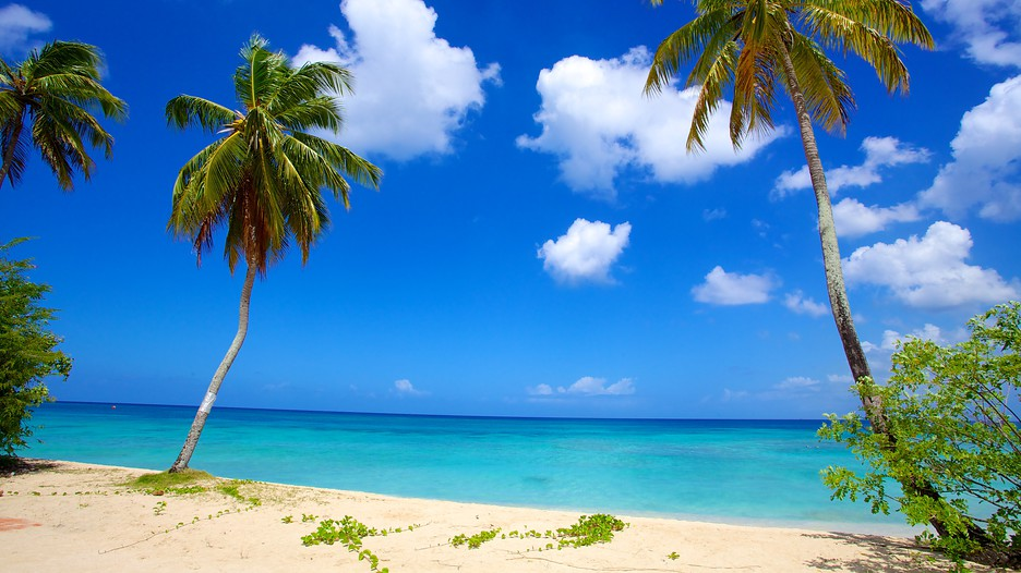 beach paradise beaches - photo #27