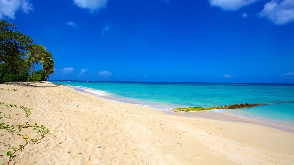 beach paradise beaches - photo #35
