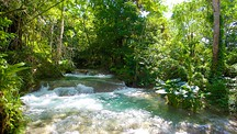 Mayfield Falls - Montego Bay