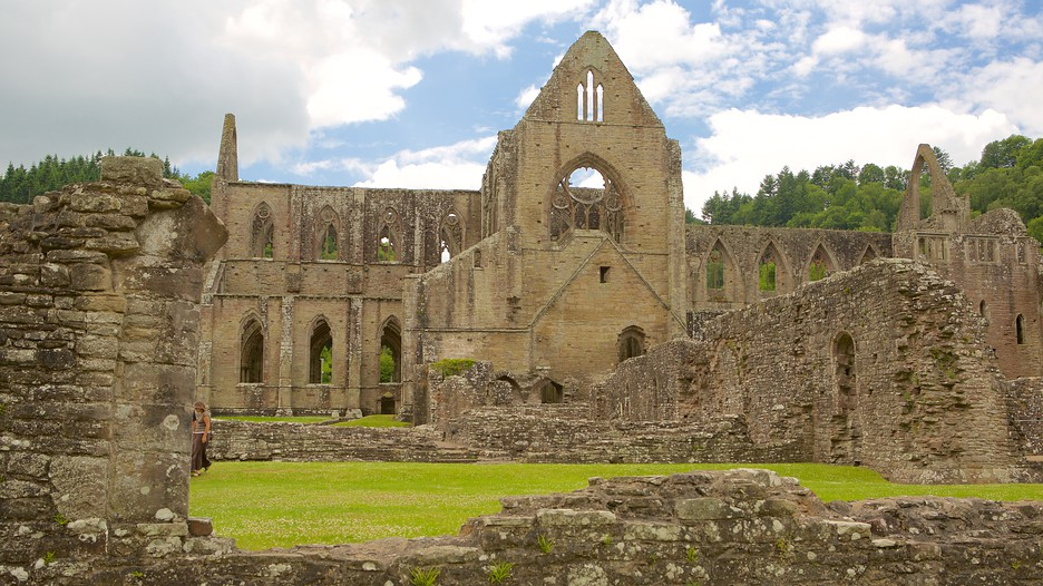 """natures role in tintern abbey Reviewing the major critical approaches to wordsworth's canonical poem """"tintern abbey,"""" i  and the role of the critic  through memories of nature's."""