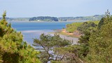 Brownsea Island - Poole - Tourism Media