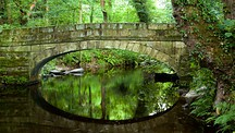 Rivelin Valley Nature Trail - Sheffield