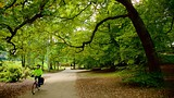 Endcliffe Park - Sheffield - Tourism Media