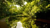 Rivelin Valley Nature Trail - Sheffield - Tourism Media