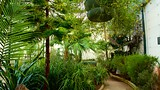 Sheffield Botanical Gardens - Sheffield - Tourism Media