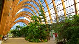 Sheffield Winter Garden - Sheffield - Tourism Media