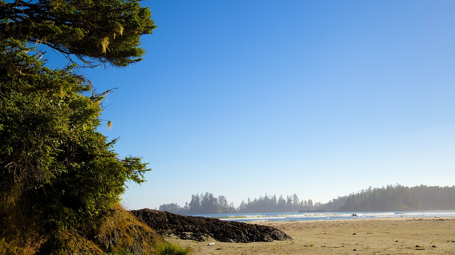 Pacific Rim National Park Reserve In Ucluelet, British ...