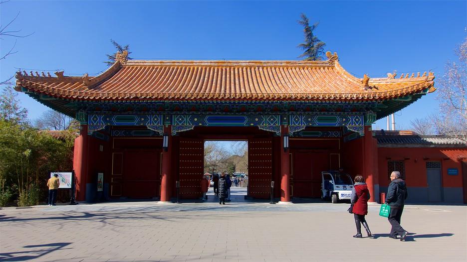 Exibindo item 5 de 25 Parque de Jingshan (Yingshan Gongyuan) - Pequim (e arredores) - Tourism Media