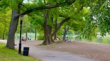 Prospect Park - New York - Tourism Media