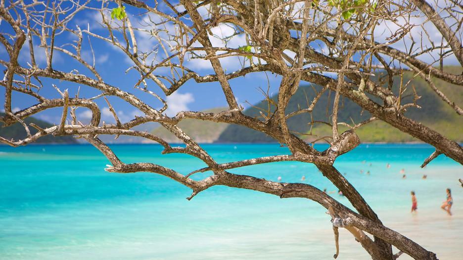 Cruceros a St John, Islas Vrgenes Ofertas, reservas e
