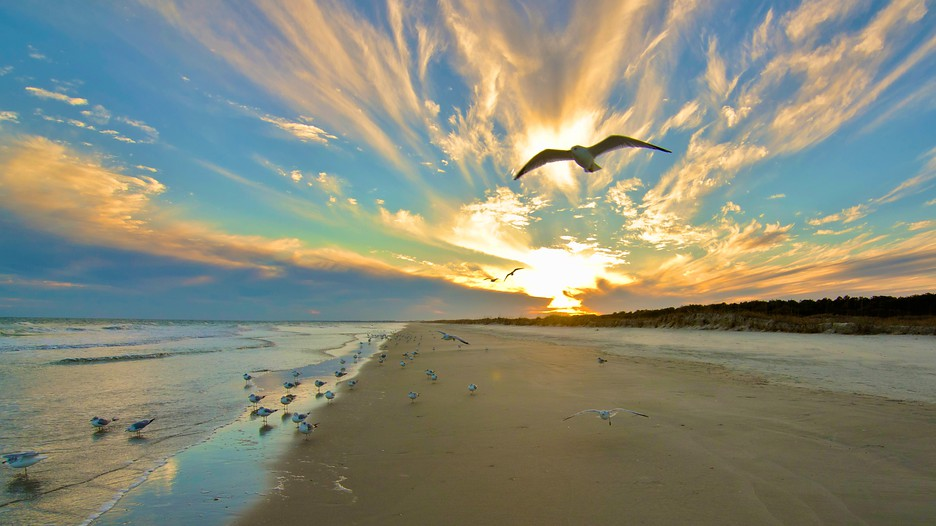 South carolina vacation packages find cheap vacations to for The cheapest beach vacation