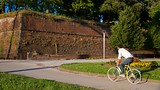 Lucca City Walls - Lucca - Tourism Media