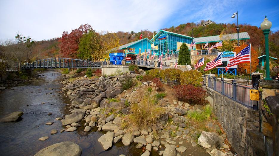 Ripley 39 S Aquarium Of The Smokies Gatlinburg Tennessee