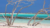 Baby Beach - Aruba - Tourism Media