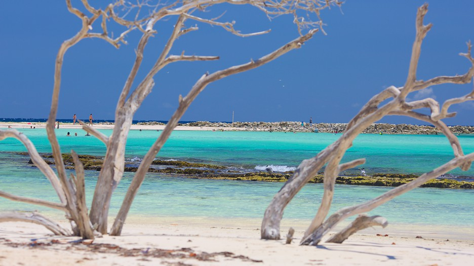 Aruba Vacations 2017: Package & Save up to $603 | Expedia