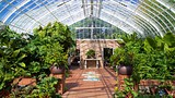 Phipps Conservatory - Pittsburgh - Tourism Media