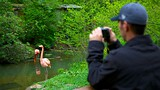 Pittsburgh Zoo and Aquarium - Pittsburgh - Tourism Media