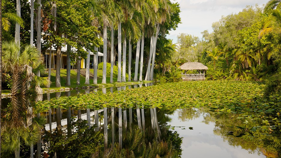 Bonnet House Museum And Gardens Fort Lauderdale Florida Attraction