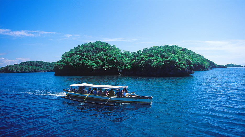 Cheap Hotels In Palawan Philippines
