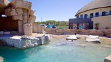 South African Marine Rehabilitation and Education Centre - SAMREC - Port Elizabeth - Tourism Media