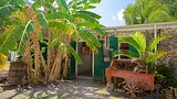 Whim Plantation Museum - Frederiksted - Tourism Media
