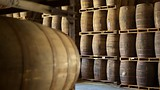 Cruzan Rum Factory - Frederiksted - Tourism Media