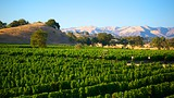 Santa Barbara Wine Country - Santa Barbara - Tourism Media