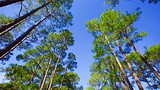St. Andrews State Park - Panama City - Tourism Media