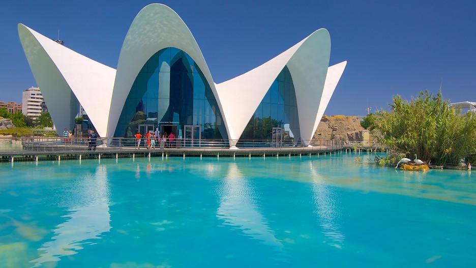 Viajes baratos a valencia vuelo mas hotel valencia expedia for Aquarium valencia precio