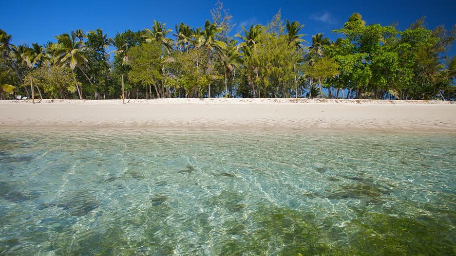 fidschi urlaub buchen sie g nstige reisen nach fidschi und fidschi st dtereisen. Black Bedroom Furniture Sets. Home Design Ideas