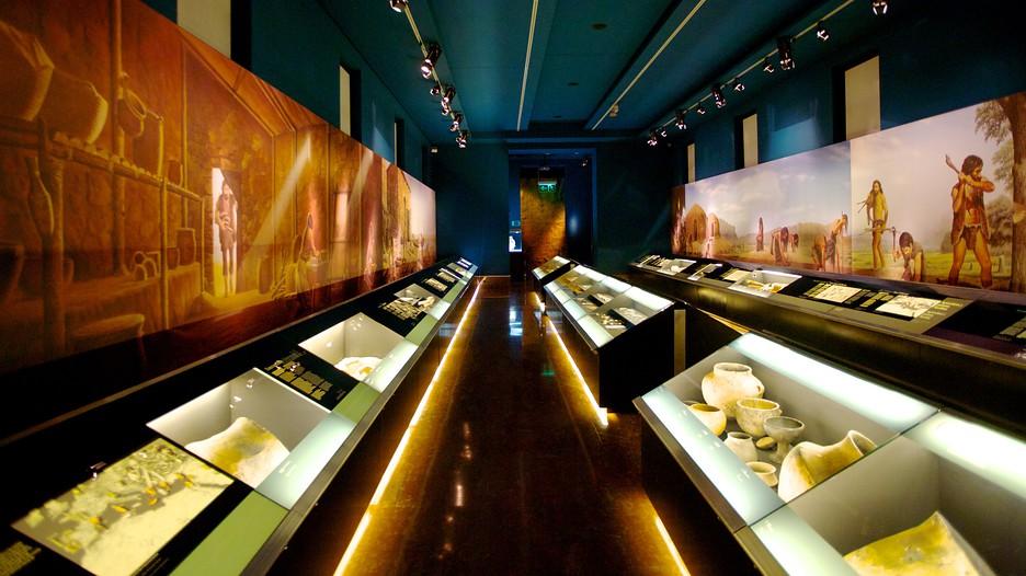 Archaeological Museum of Alicante in Alicante,  Expedia