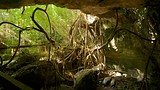 Burial Mount Cave - Bahamas - Tourism Media