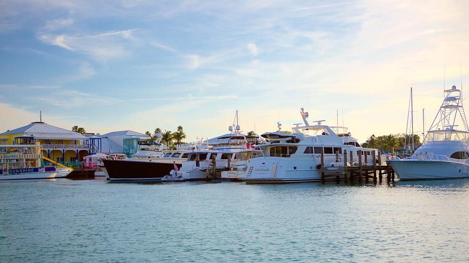 Freeport bahamas casino 15