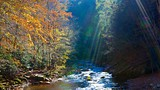 Great Smoky Mountains National Park - Tennessee - Tourism Media