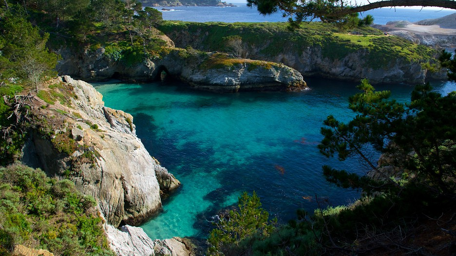 Point Lobos State Reserve In Carmel California Expedia