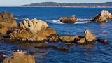 Point Lobos State Reserve - Monterey (y alrededores) - Tourism Media