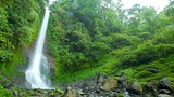 Showing item 13 of 20. Gitgit Waterfall - Bali - Tourism Media