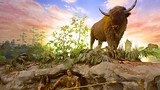 South Florida Museum - Florida - Tourism Media