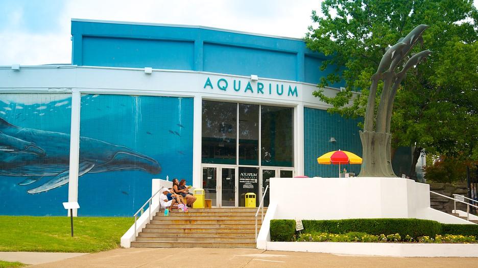 Aquarium Of Niagara Niagara Falls