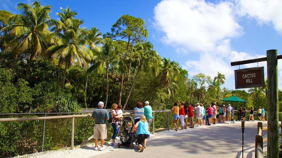 Naples Zoo At Caribbean Gardens Punti Di Interesse A Naples Con