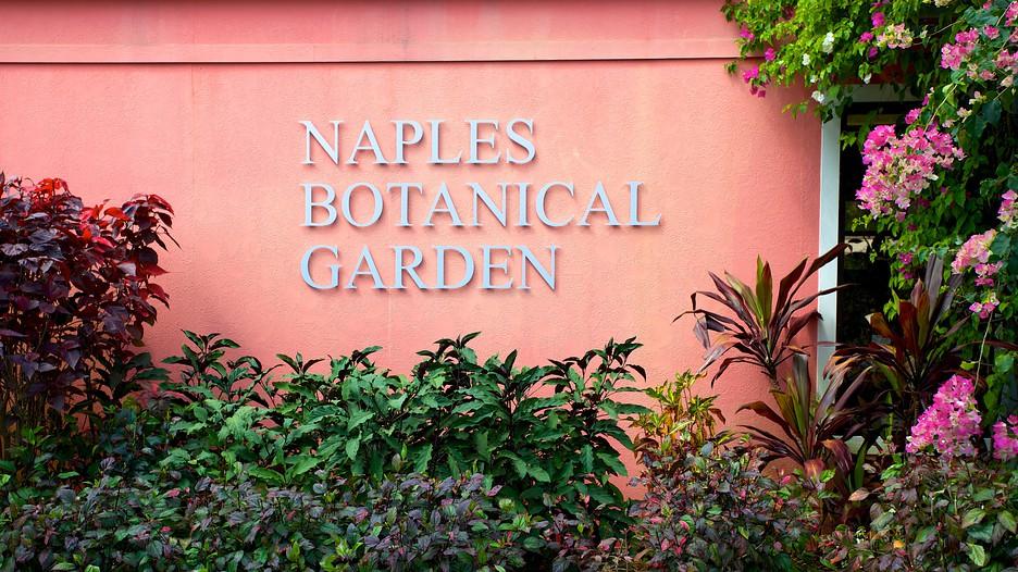 Naples Botanical Garden In Naples Florida