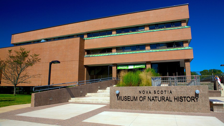 The Museum of Natural History is located at Summer Street in Halifax, near the Commons. There is a (paid) parking lot adjacent to the building, making it easy to visit. There is a (paid) parking lot adjacent to the building, making it easy to visit.
