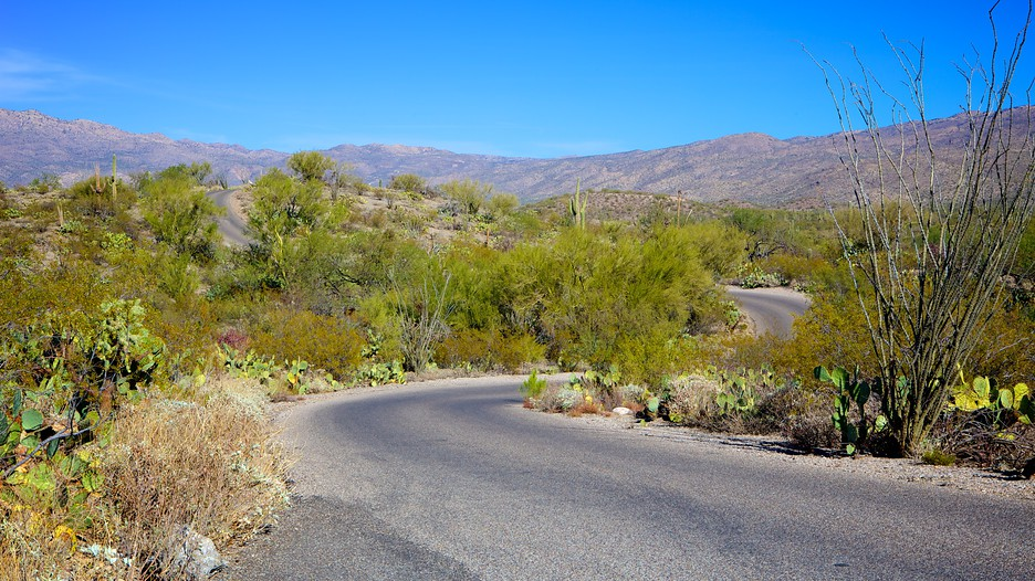 rincon mobile home park with Saguaro National Park Tucson D6085809 on ManufacturedHomeForSale likewise Lykiaworlddivingcentre additionally 45 Hd Beautiful Wallpapersbackgrounds For Free Download in addition Picture Gallery further Wallpapers Waterfall.
