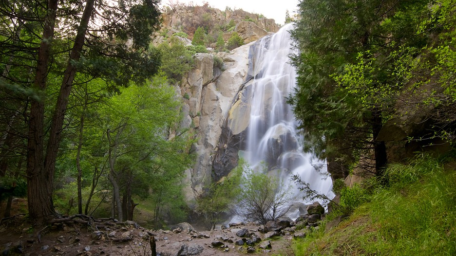 Sequoia national park vacations 2017 package save up to for Cheap cabin deals in sequoia