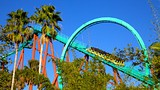 Busch Gardens - Tampa - Tourism Media